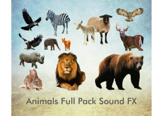 Animals Full Pack Sound FX – Free Download Unity Assets