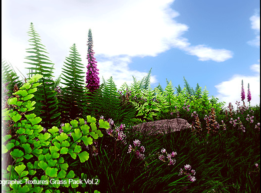 HQ Photographic Textures Grass Pack Vol.2 – Free Download Unity Assets