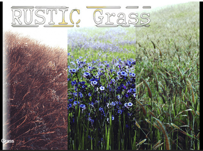 RUSTIC Grass – Free Download Unity Assets